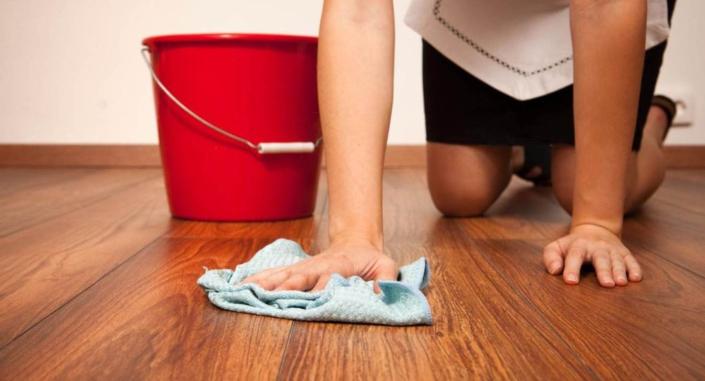Перед применением средства нужно вымыть место, где кошка гадит, чистой тряпкой и теплой водой