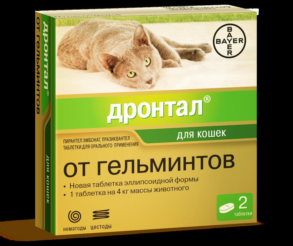Подробная инструкция по применению Дронтала для кошек