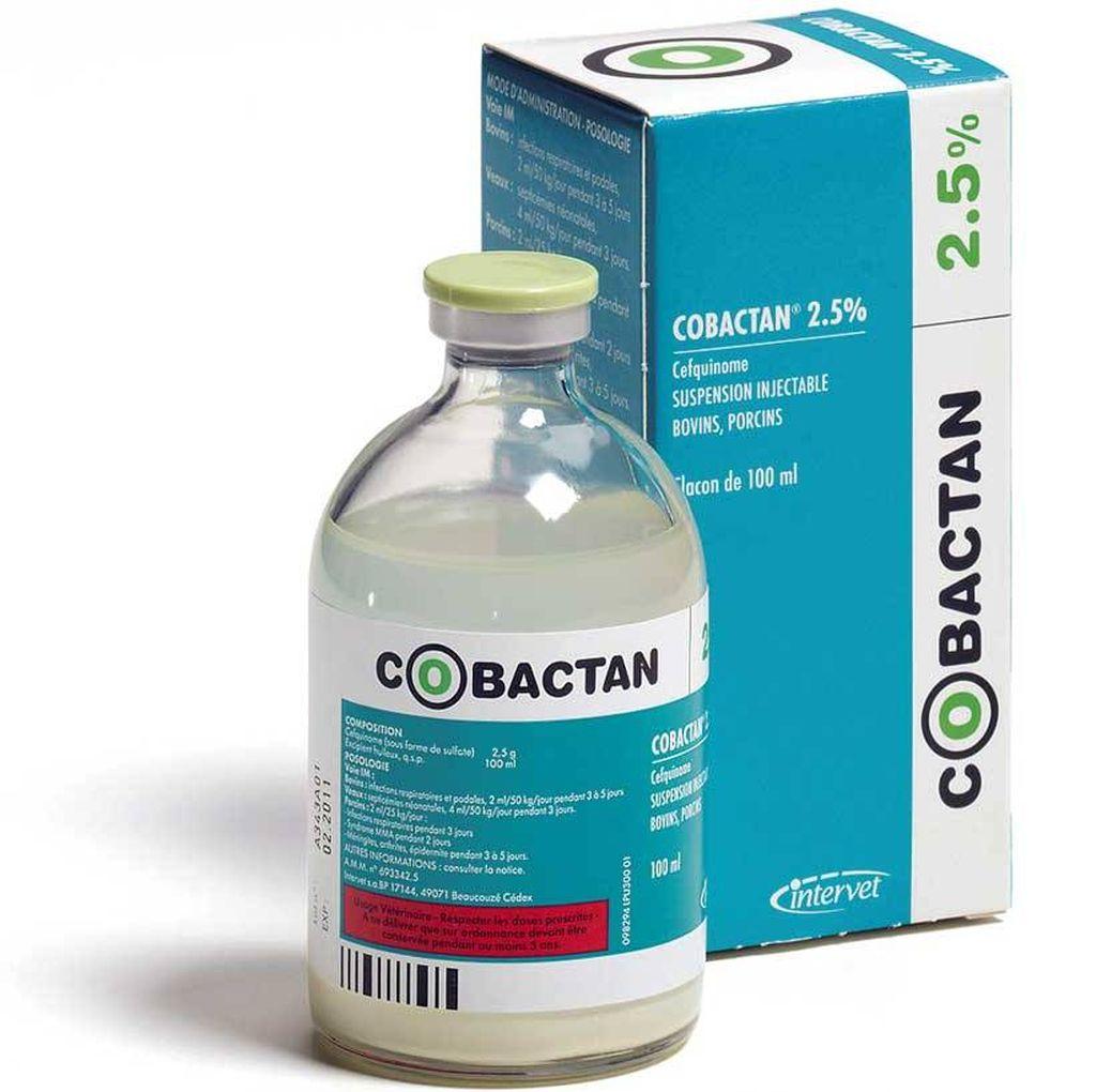 Антибиотик Кобактан
