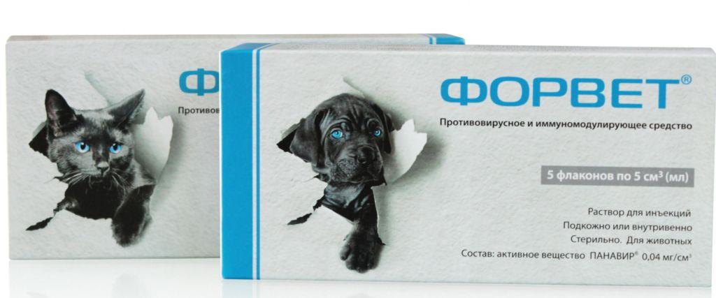 Полная инструкция по применению препарата форвет для кошек и собак