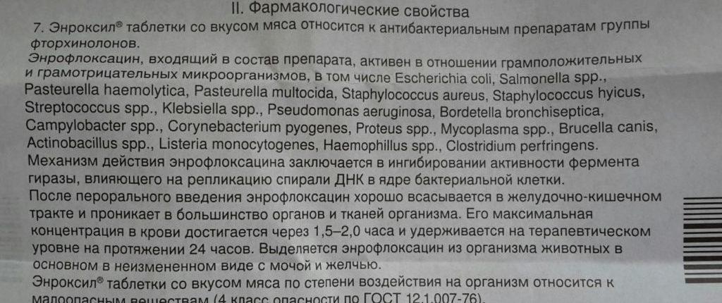Полная инструкция по применению препарата энроксил для кошек и собак