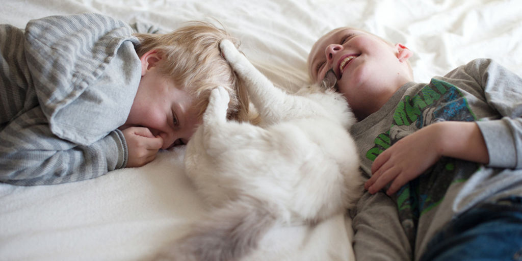 Дети и кошка