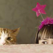 9 лучших пород кошек для детей