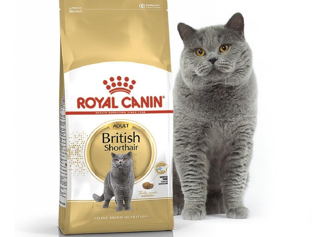 Роял Канин British Shorthair корм для британских кошек