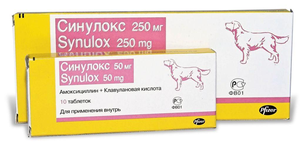 Инструкция по применению препарата синулокс для кошек и собак