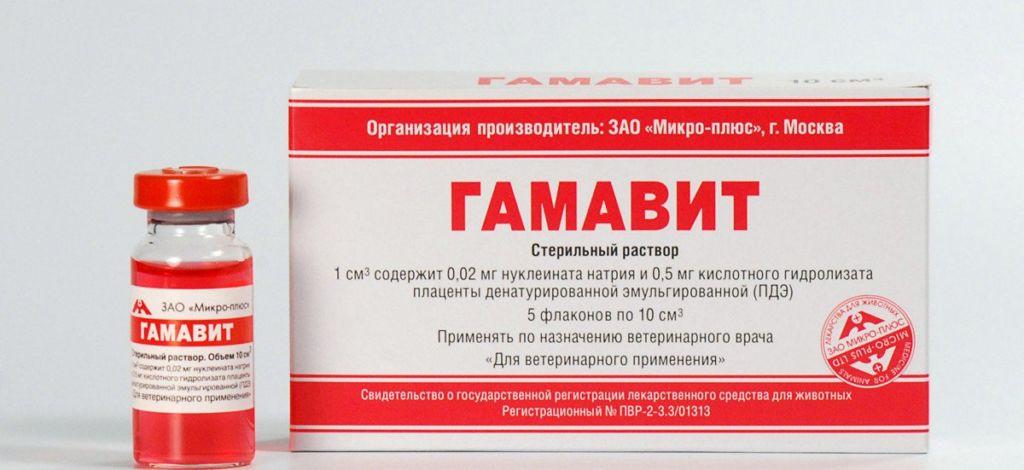 Гамавит – иммуномодулирующее средство для кошек на основе натуральных компонентов