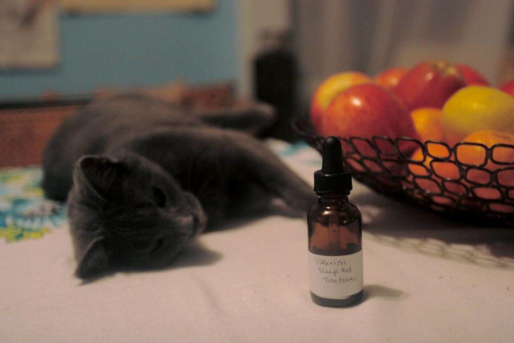 Валериана действует на кошек как наркотик