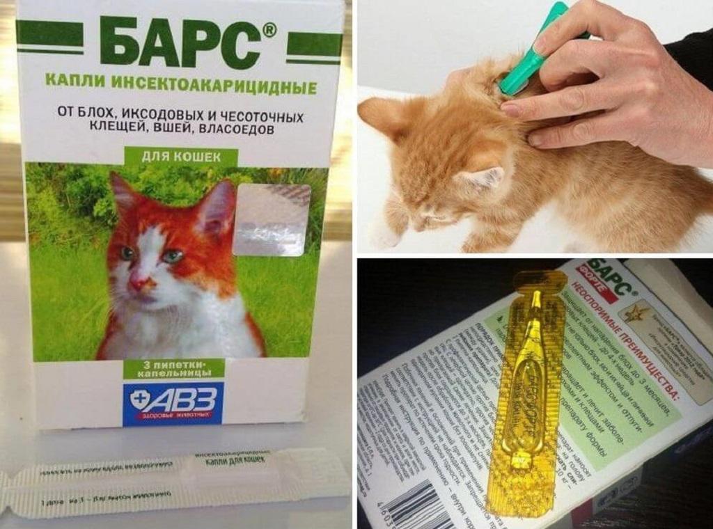 Капли барс для кошек