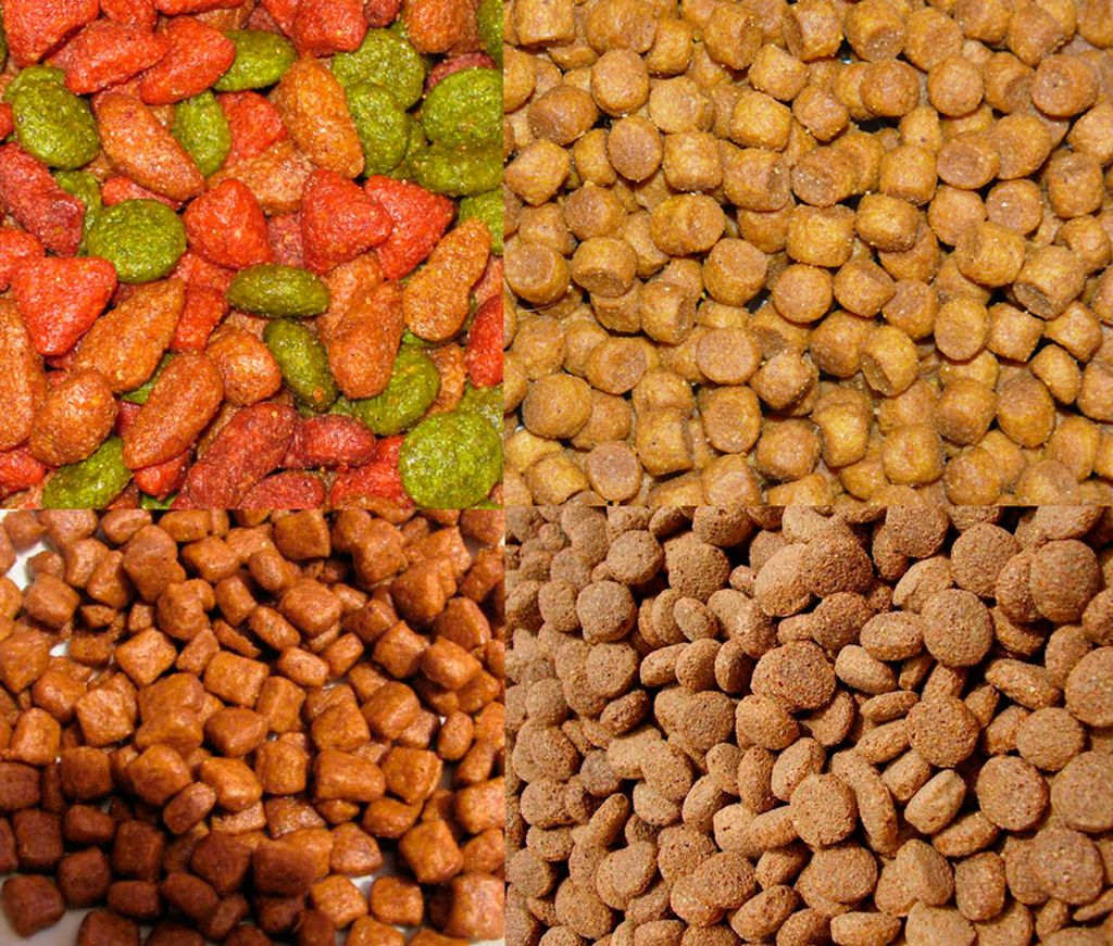 В зависимости от ингредиентов корм может быть разным по цвету и форме