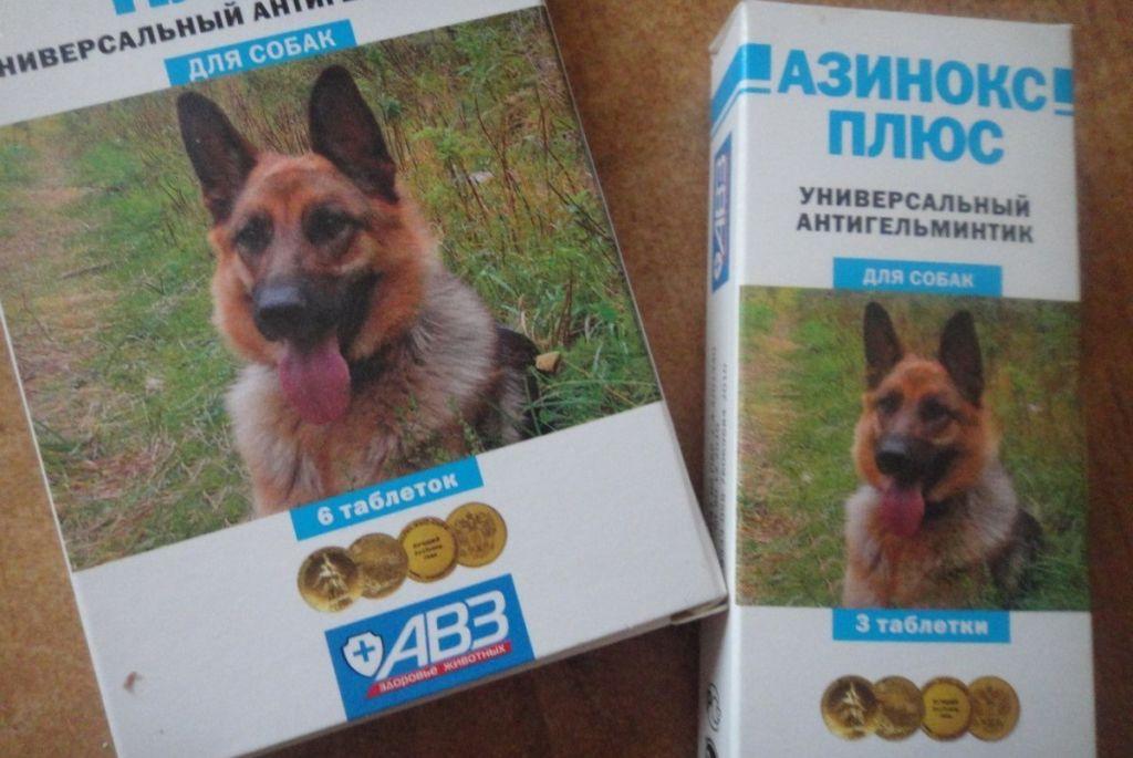 Таблетки азинокс от глистов для собак и кошек: инструкция по.