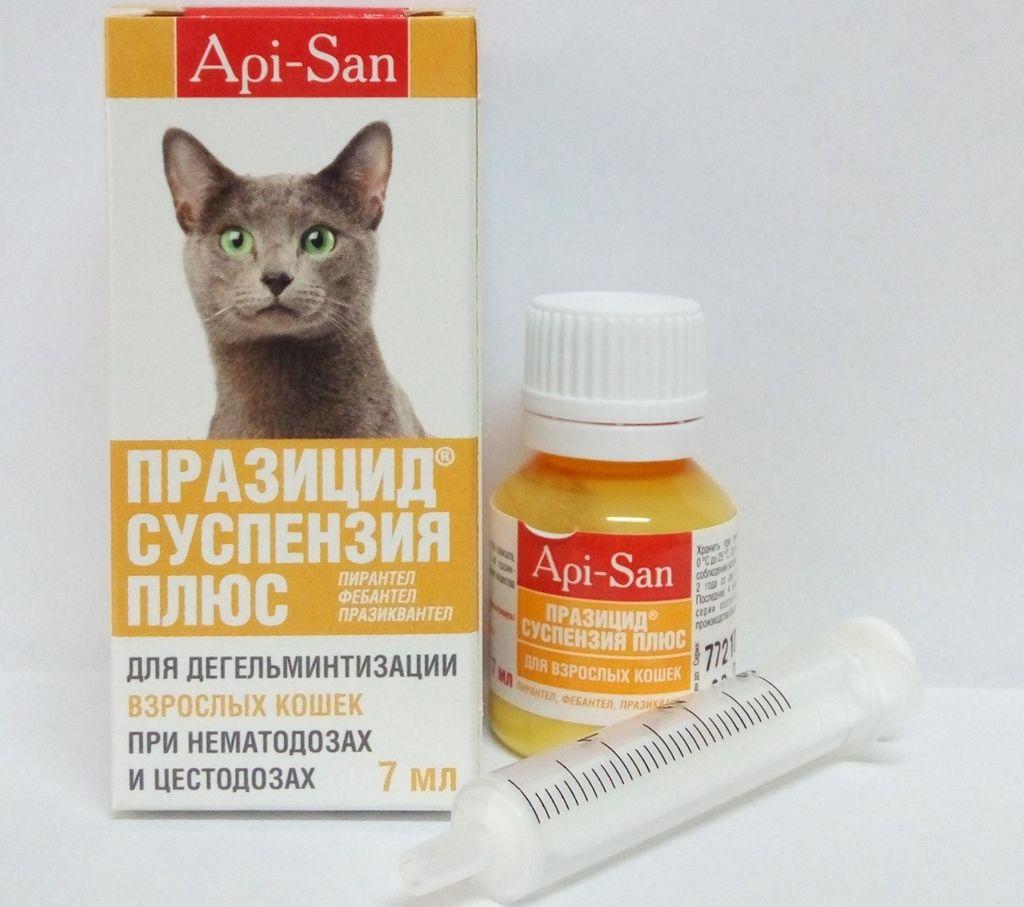 Инструкция по применению суспензии празицид плюс для кошек и собак