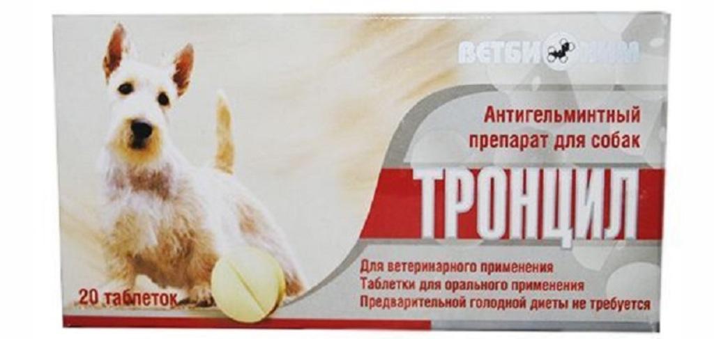 Подробная инструкция по применению препарата тронцил для собак
