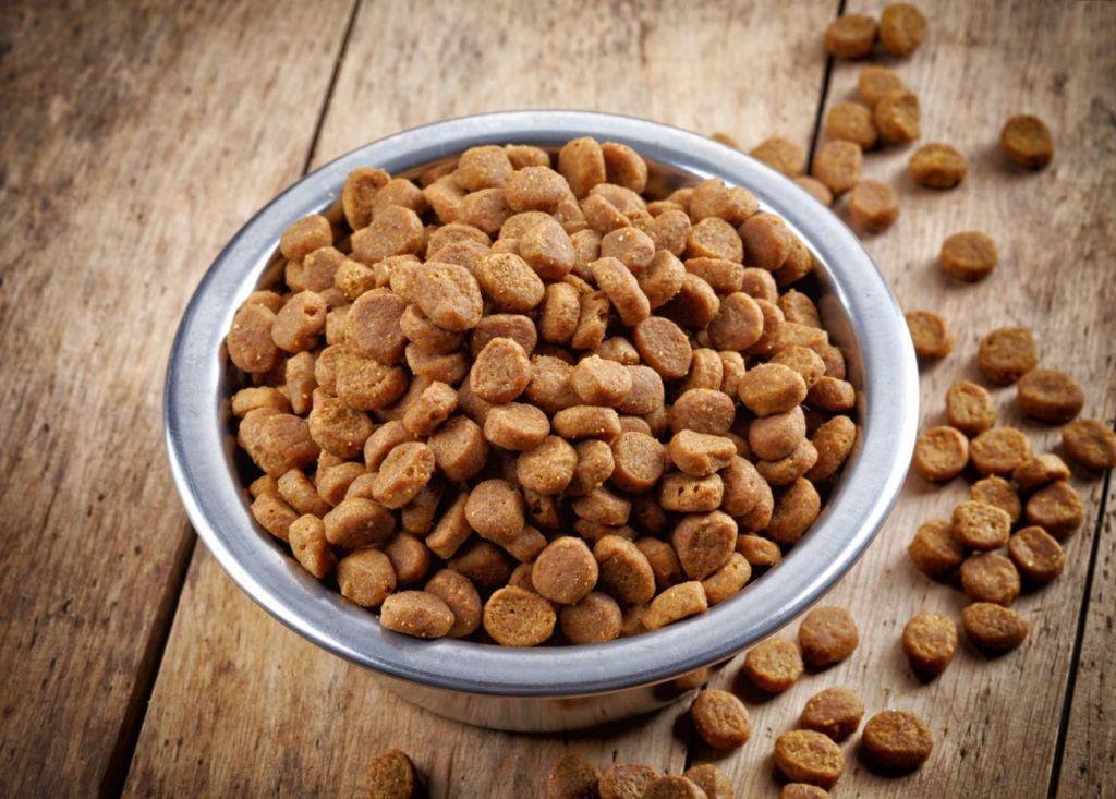 Лучшие гипоаллергенные корма для собак
