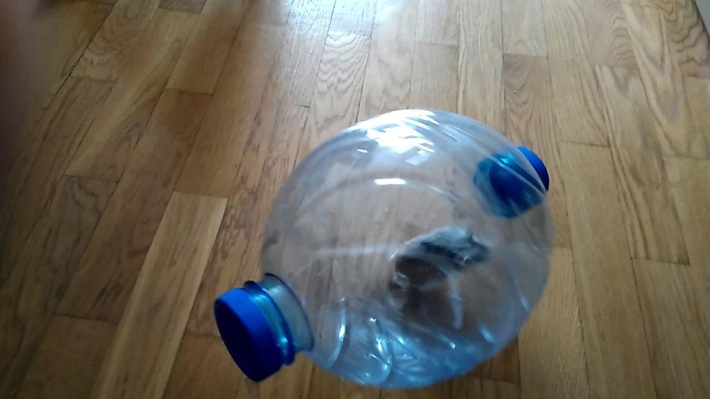 Как сделать прогулочный шар для хомяка своими руками