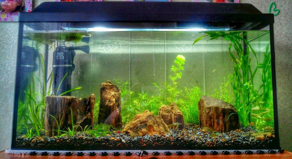 Самый простой в измерении - прямоугольный аквариум
