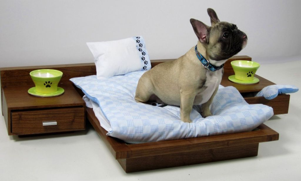Как отучить собаку писать на кровать и что делать если не получается