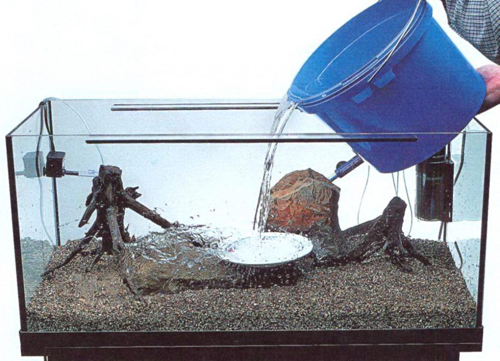 Заливать в аквариум необходимо только отстоянную воду