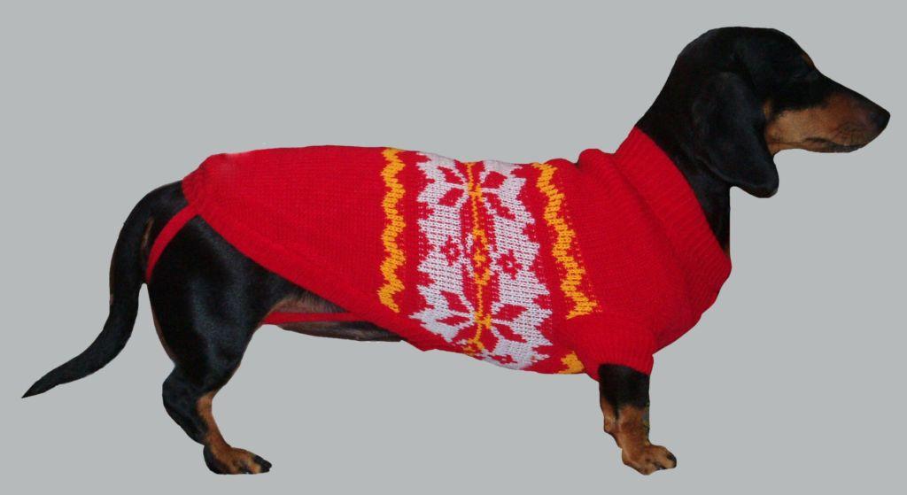 Вариант вязанного свитера для собаки