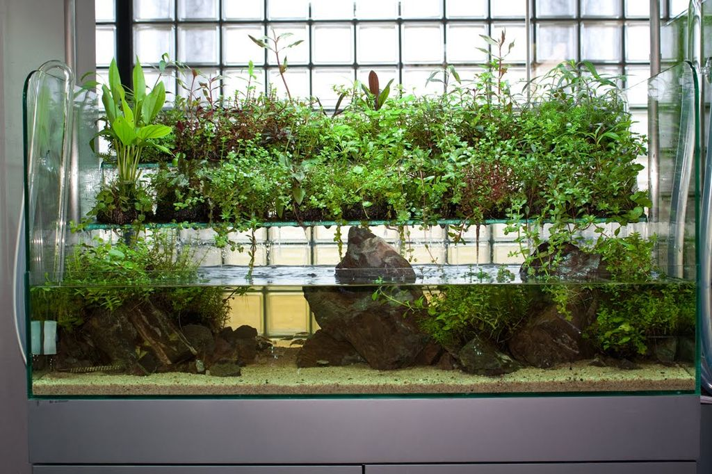 Фитофильтр для аквариума