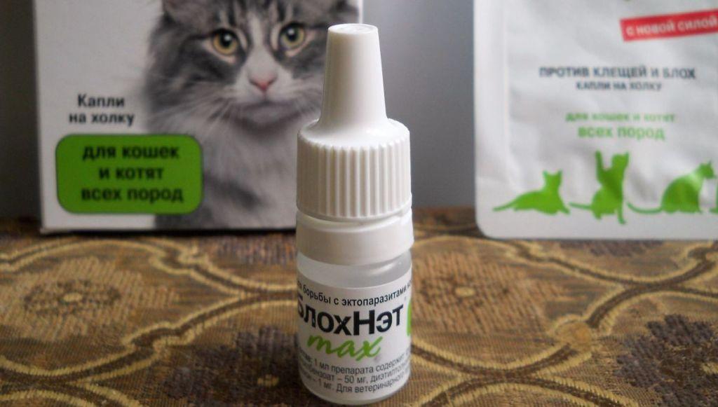 блохнэт для кошек инструкция