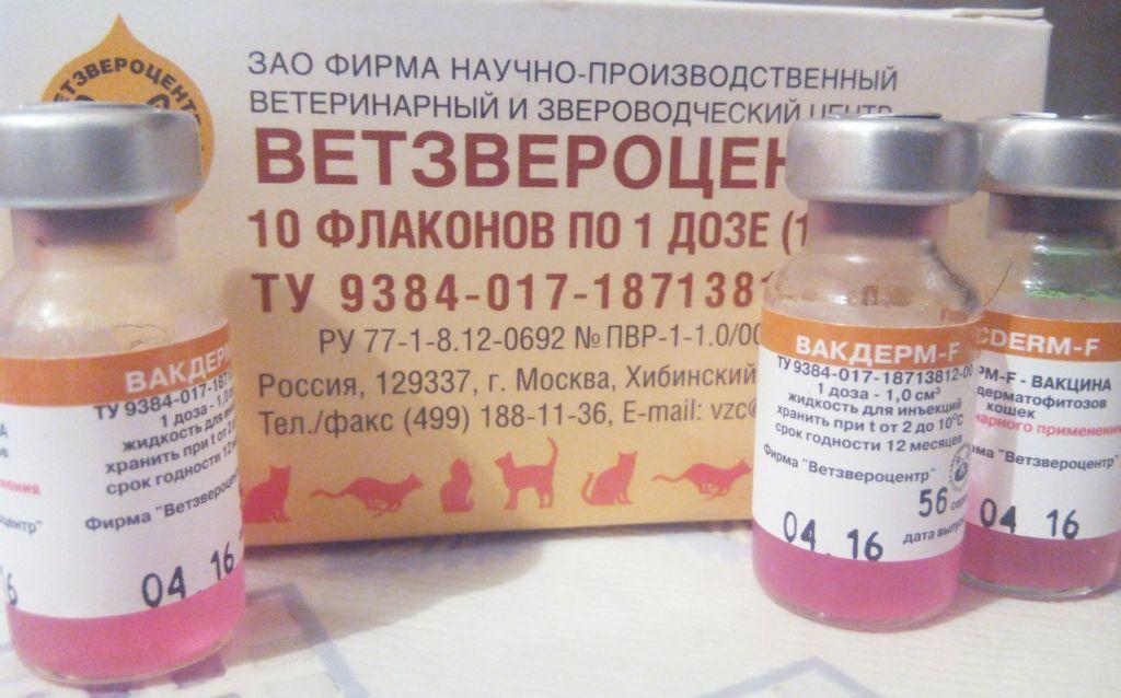 Выпускается вакцина в инъекциях