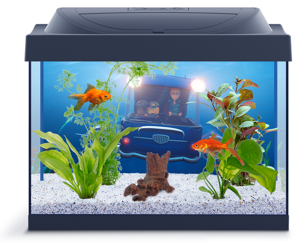 Самой удобной является прямоугольная форма аквариума