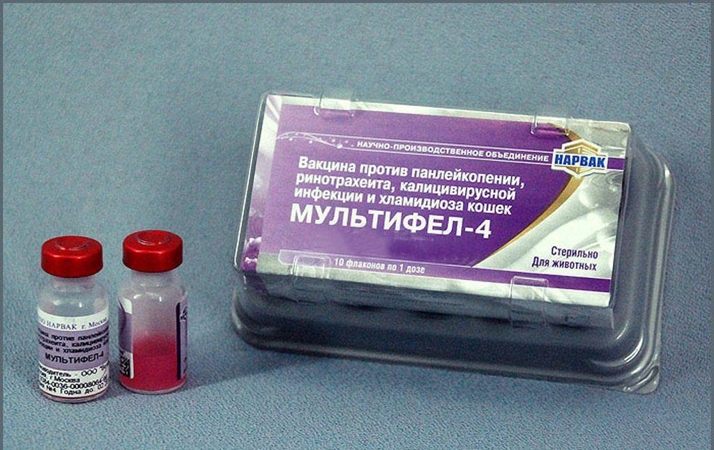Вакцина Мультифел 4