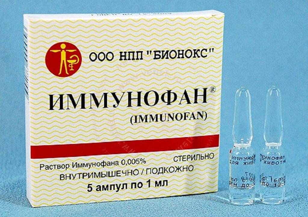 Иммунофан для кошек используется как лечебный препарат, так и профилактический, помогающий сопротивляться организму бактериальным и вирусным инфекциям
