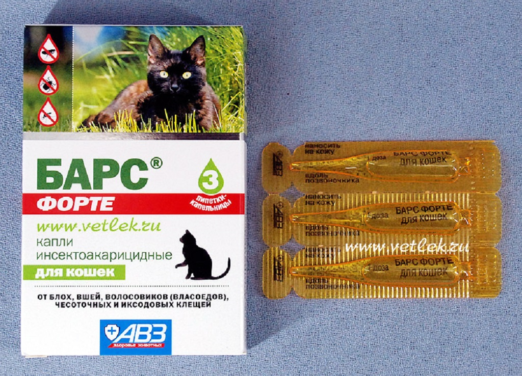 Подробная инструкция по применению капель барс от блох и клещей для кошек и собак