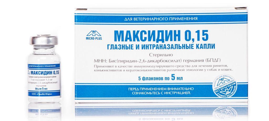 Инструкция по применению препарата максидин для кошек и собак