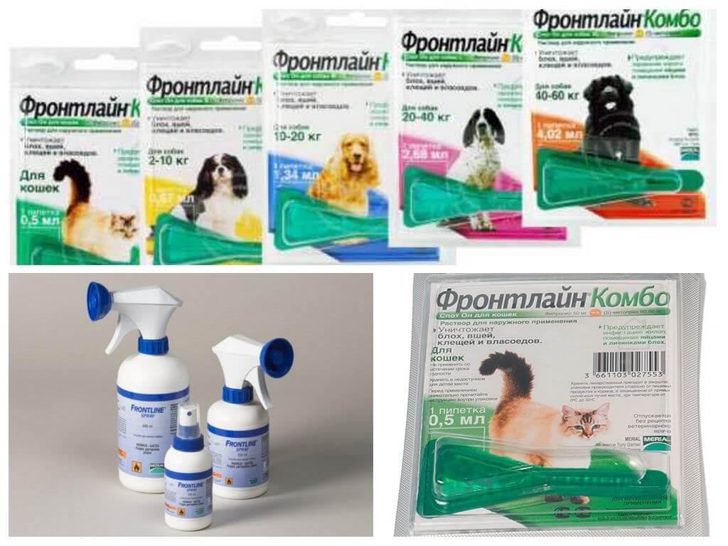 Фронтлайн для животных: противопаразитарный раствор