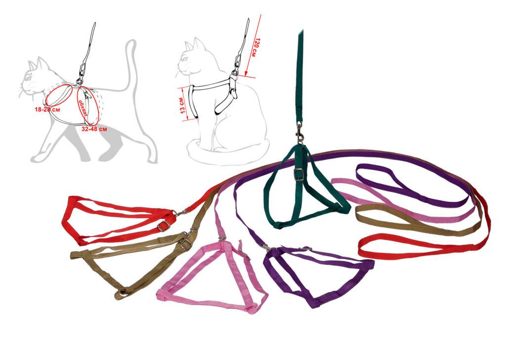 Шлейка является прекрасным аксессуаром для безопасных прогулок с питомцем