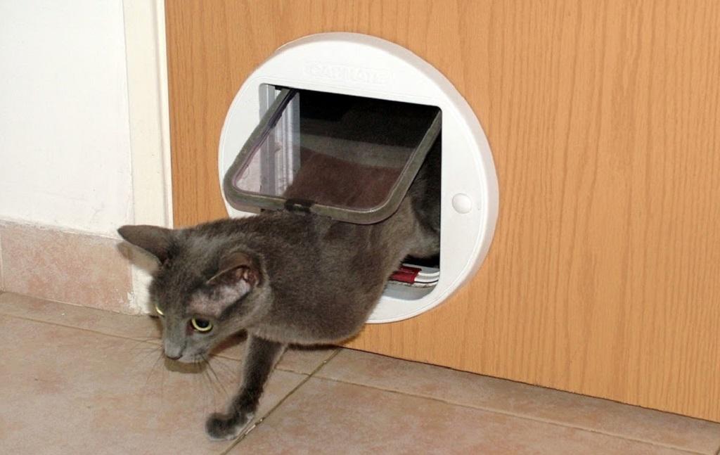 Встроенное кошачье убежище