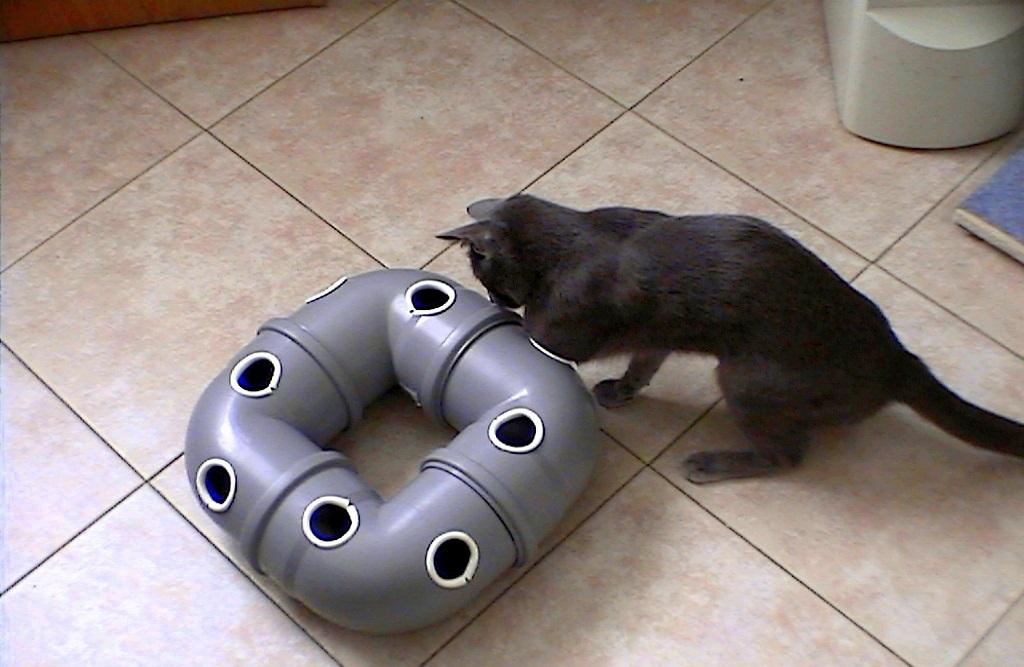 Готовая игрушка для кошки