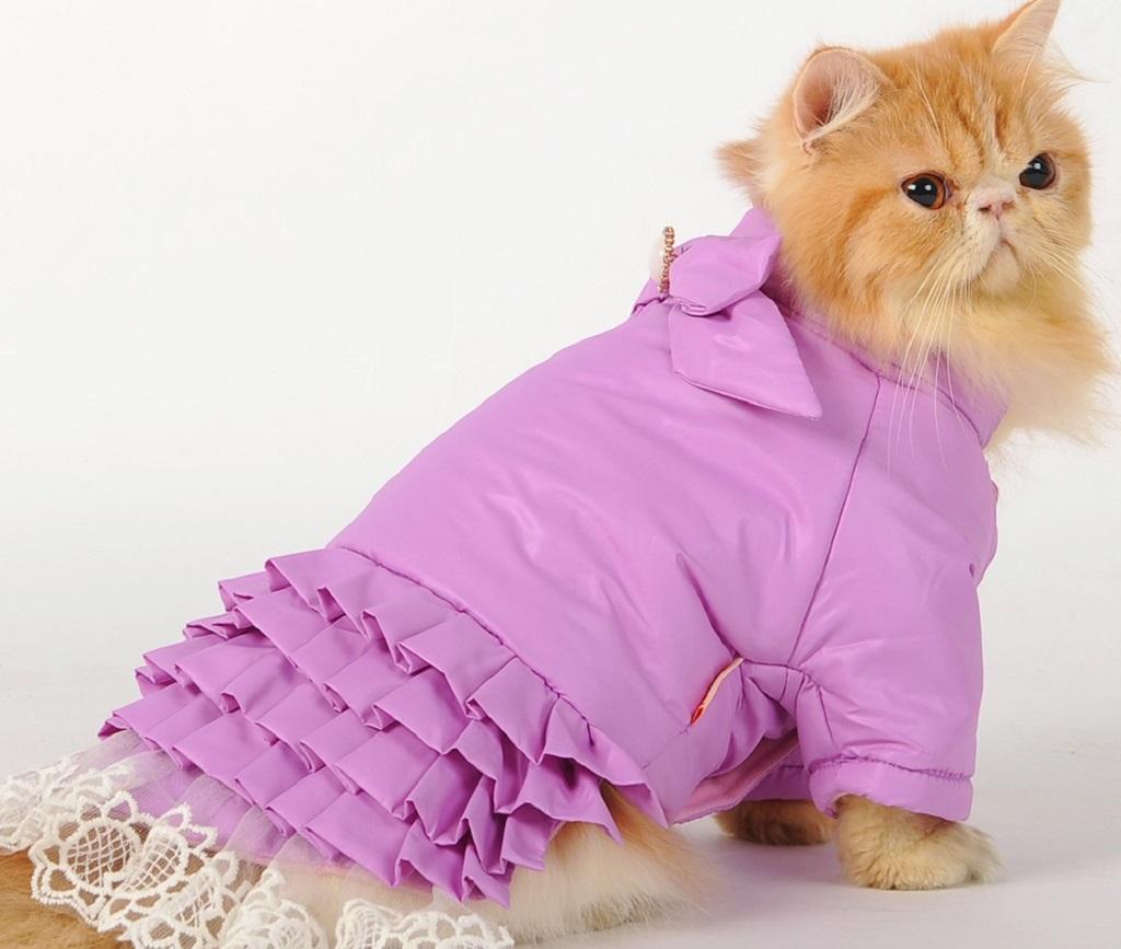 Блузка платье для кошечки
