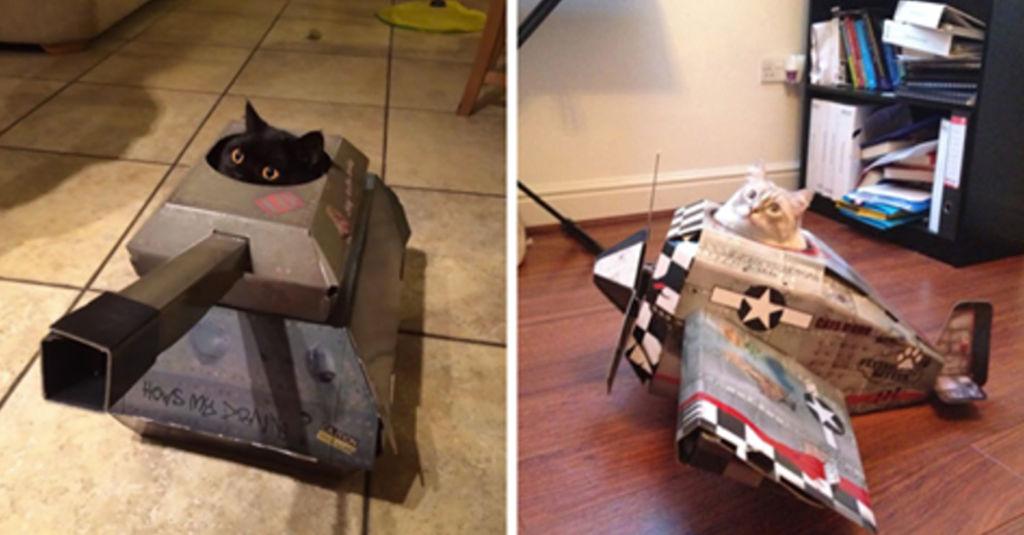 Интересные варианты кошачьих домиков