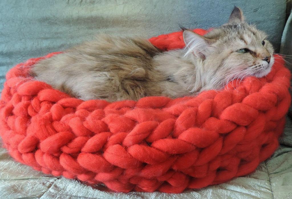 Как легко и быстро сделать лежанку для кошки своими руками