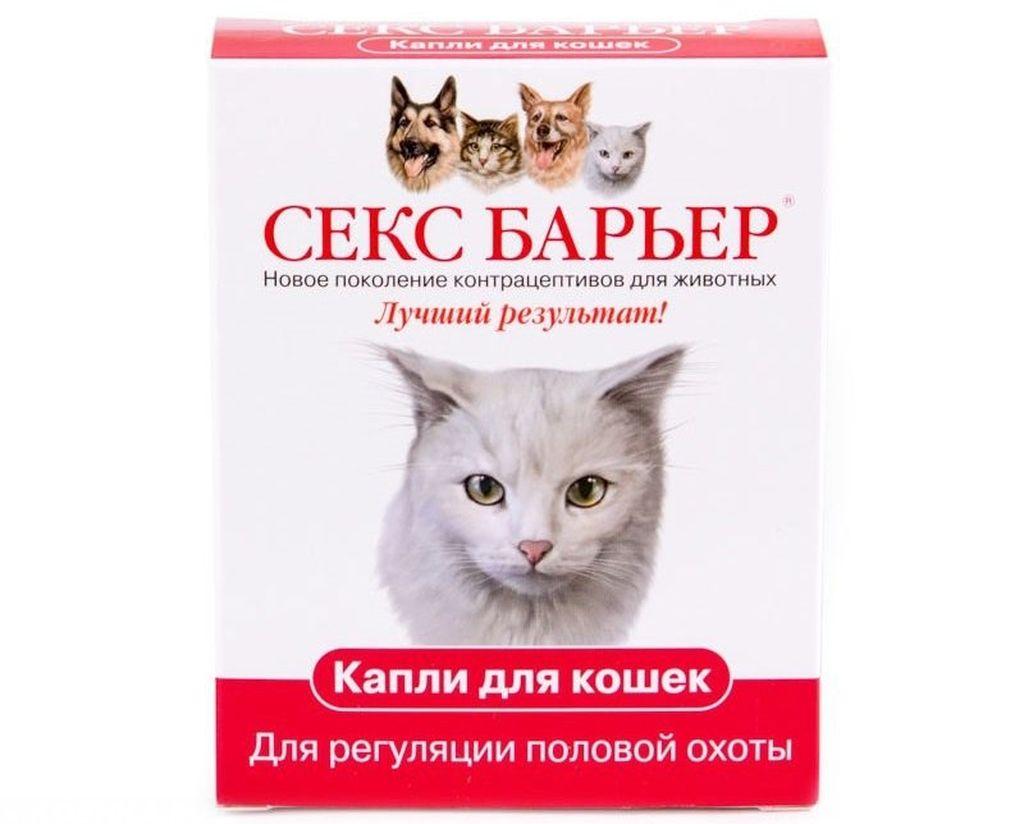 Ветеринары не рекомендуют использовать гормональные лекарственные средства более двух раз в год