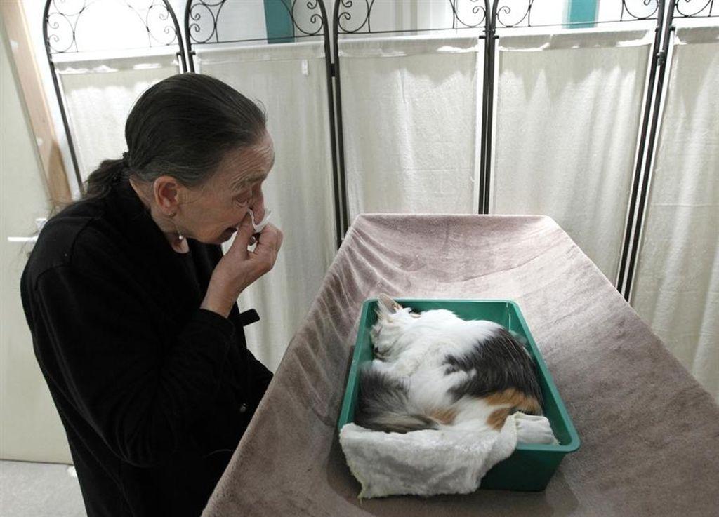 В ветеринарных клиниках можно заказать процедуру кремации питомца