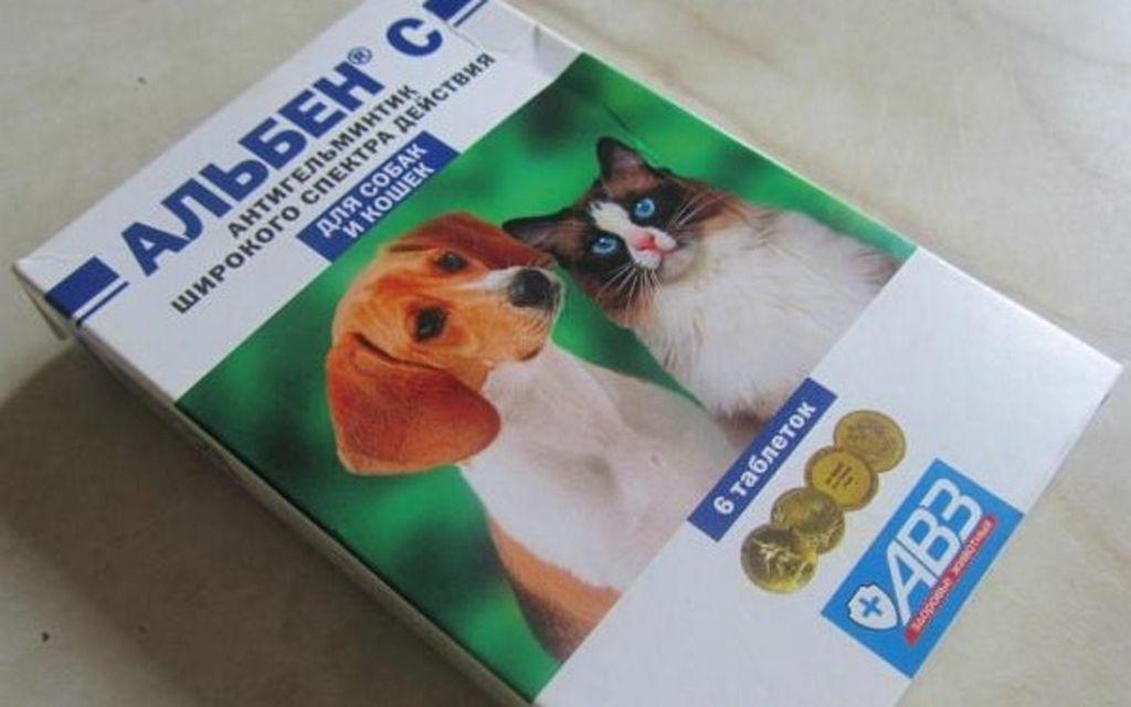 Стоимость упаковки из 6 таблеток около 50 рублей