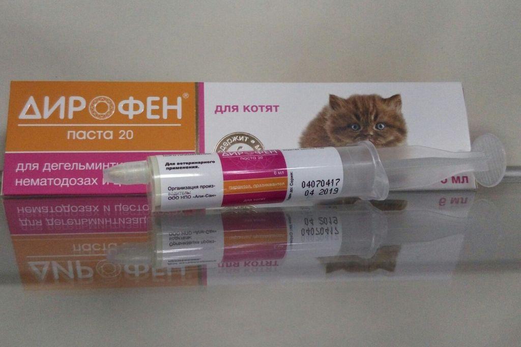 Котятам и щенкам не стоит давать таблетки, предусмотренные для взрослых животных