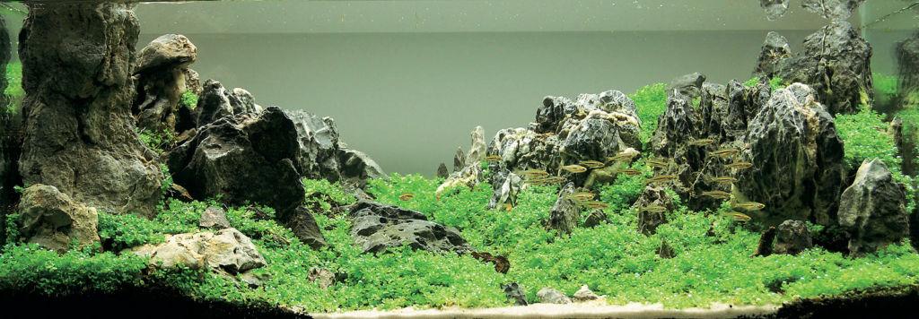 Завершенная композиция с использованием камней