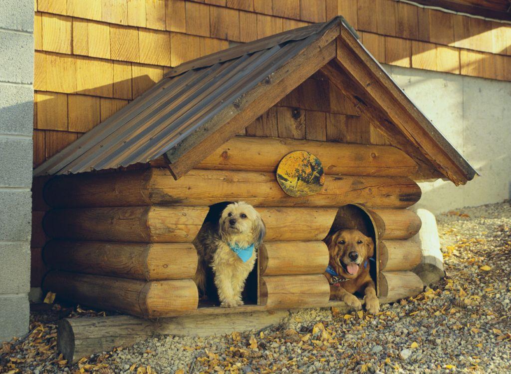 Как правильно сделать будку для собаки своими руками