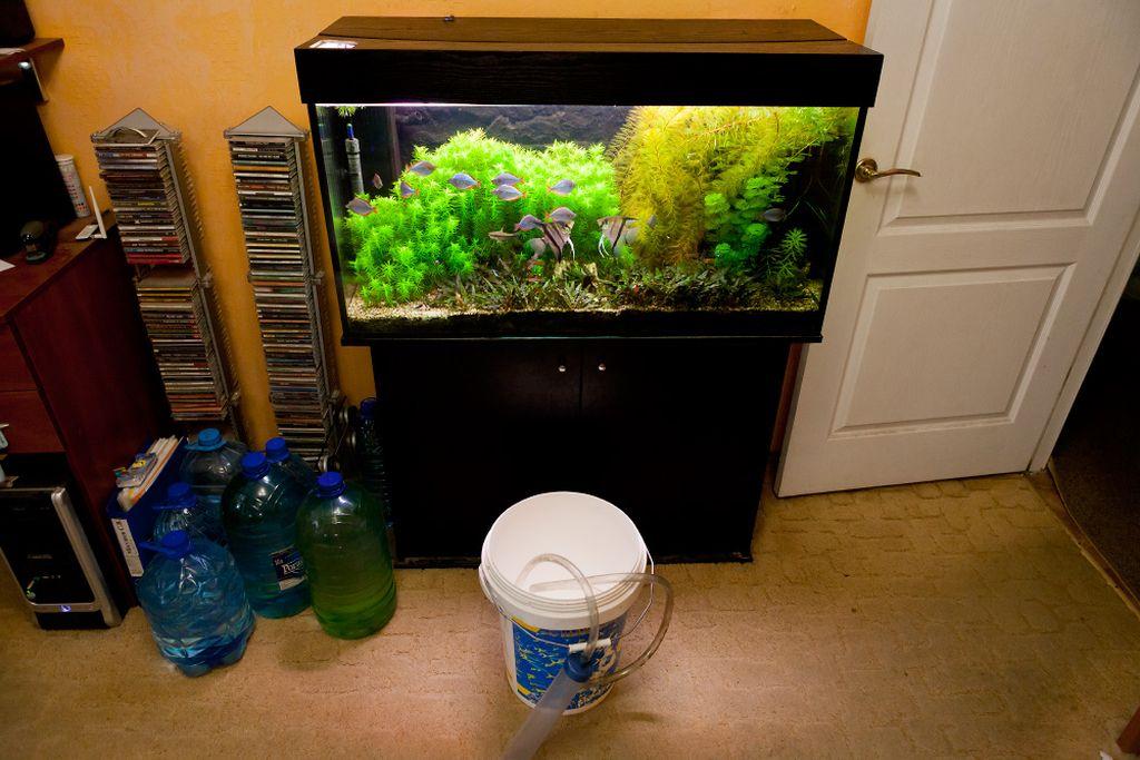 Новичку стоит остановиться на простой прямоугольной форме аквариума