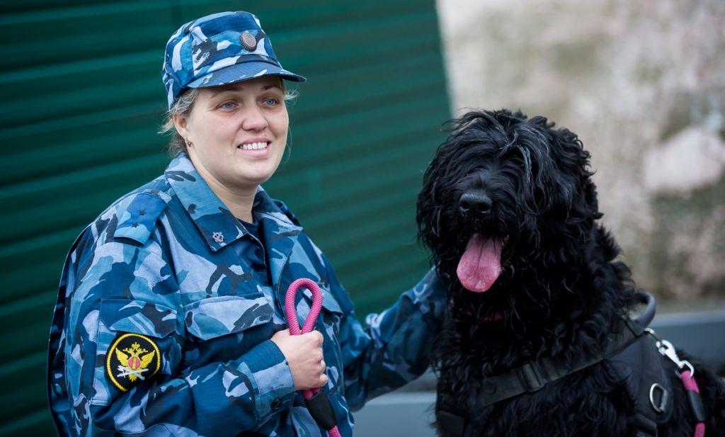Русский черный терьер хорошо зарекомендовал себя в охранно-конвойной службе