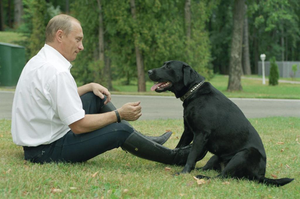 Владимир Владимирович вместе со своим лабрадором Конни