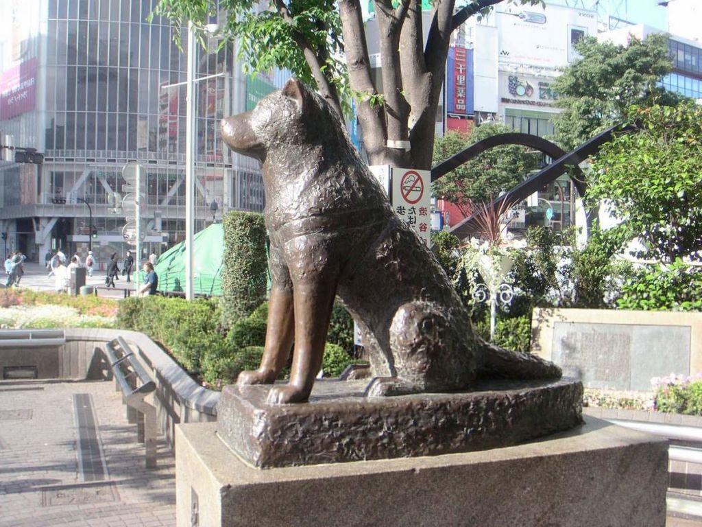 12 известных памятников самым преданным собакам в мире