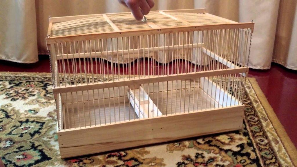 Как правильно сделать клетку для попугаев своими руками