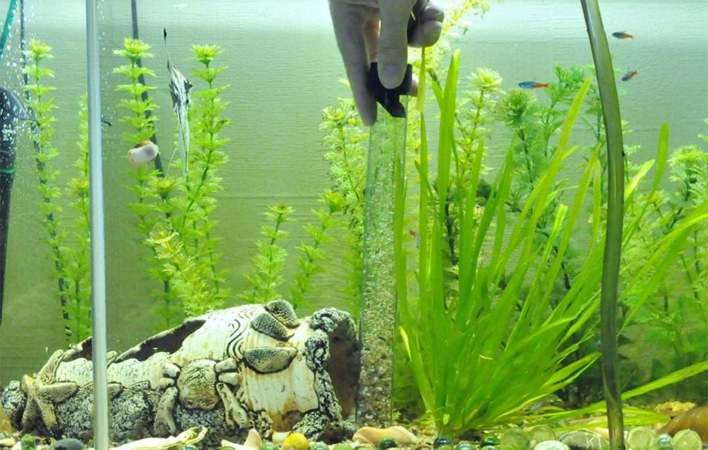 Простейший очиститель аквариума можно изготовить самостоятельно