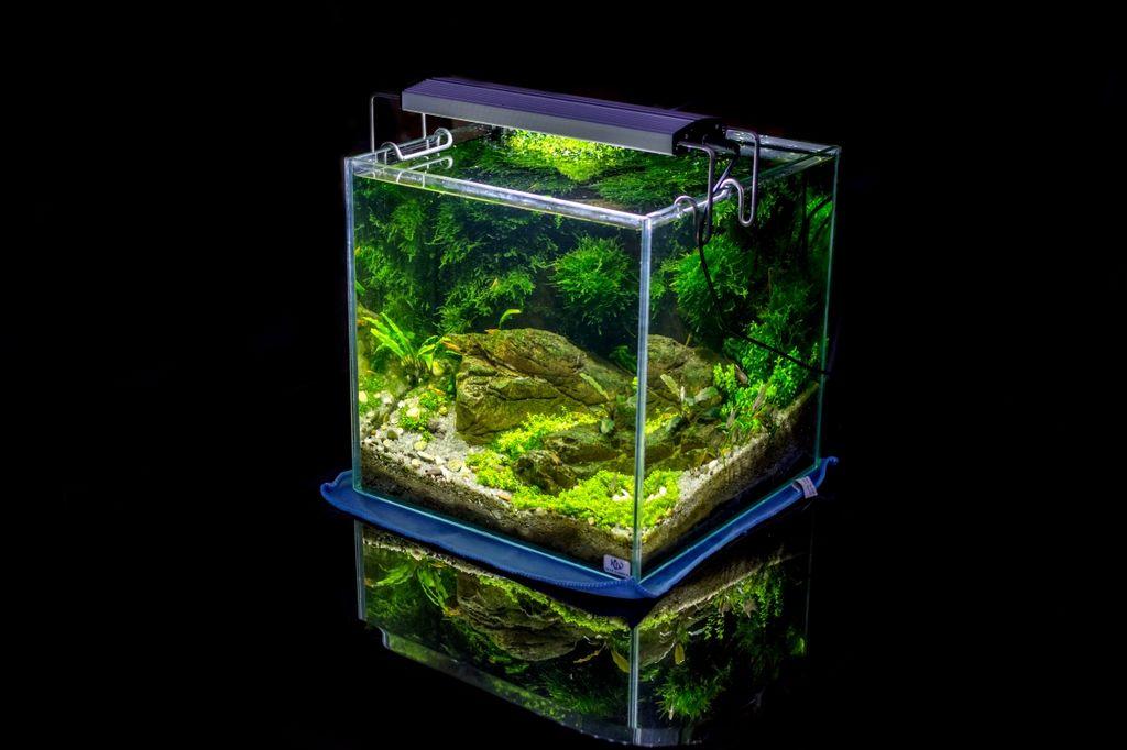 Как рассчитать объем аквариума